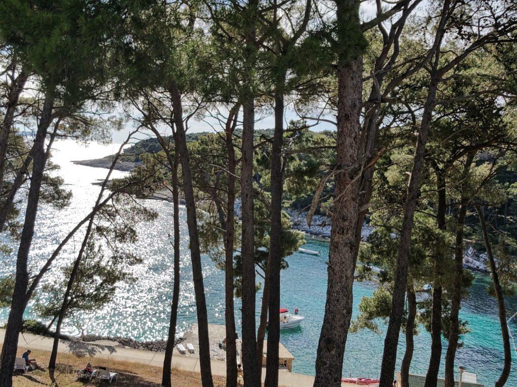 Croatian health tourism is a new challenge for diaspora