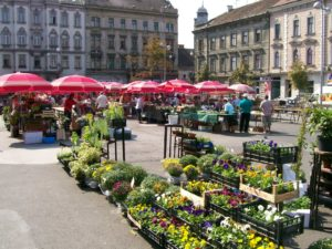 British Square, Zagreb Croatia