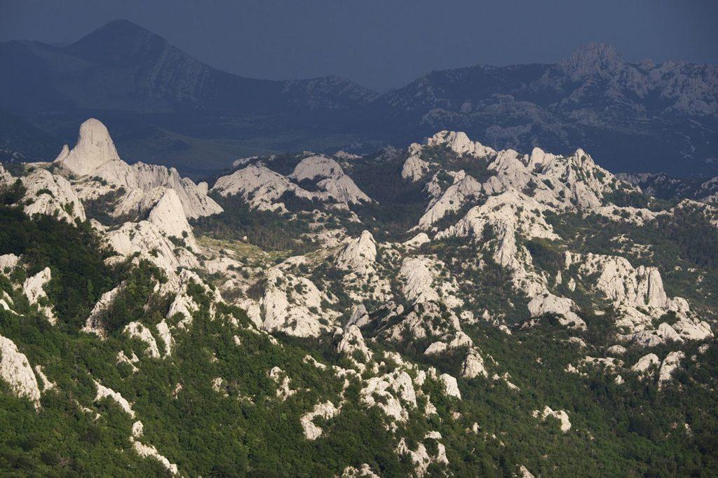 Velebit, photo credit by Linden tree