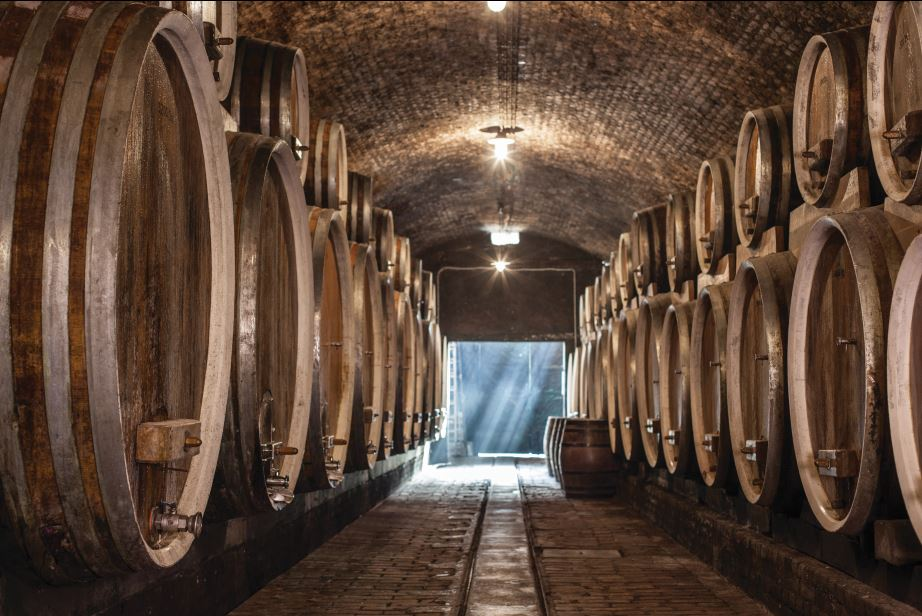 Ilok Cellars – The place where wine is a lifestyle!