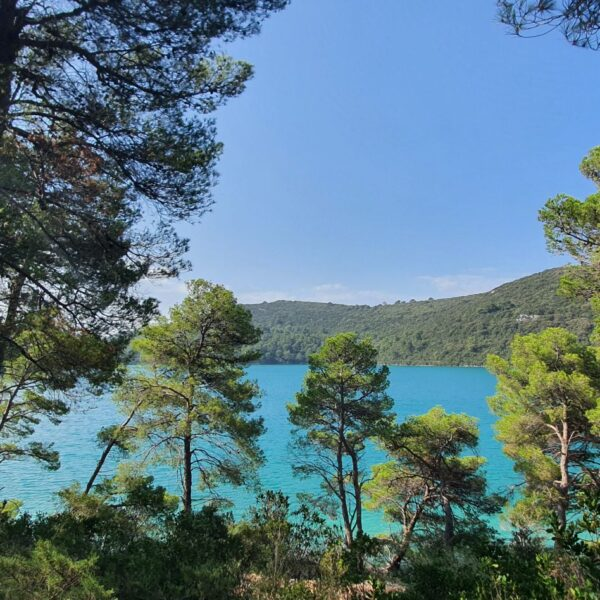 Mljet island, Croatia, photo by Croatian Attractions