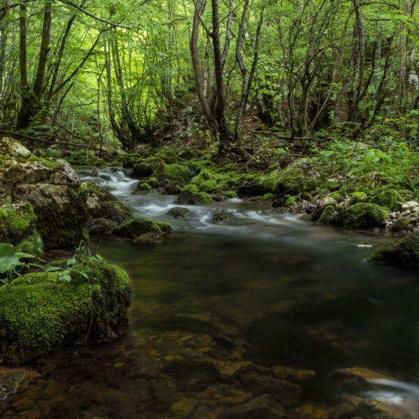 River Ričina, Lika, photo credit by Gospić TB