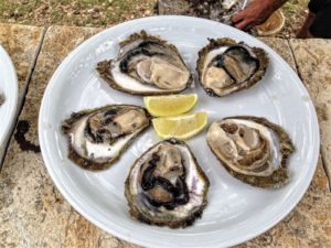 Ston, Croatia - Croatian Attractions-Oysters