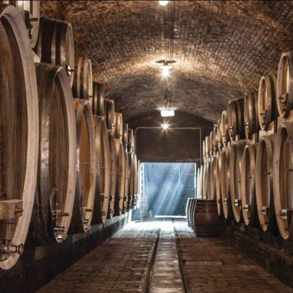 Ilok old cellars, photo credit by Iločki podrumi