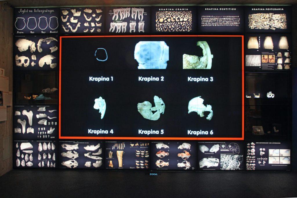 Krapina Neanderthal Museum, Croatia, photo by D. Fabijanić