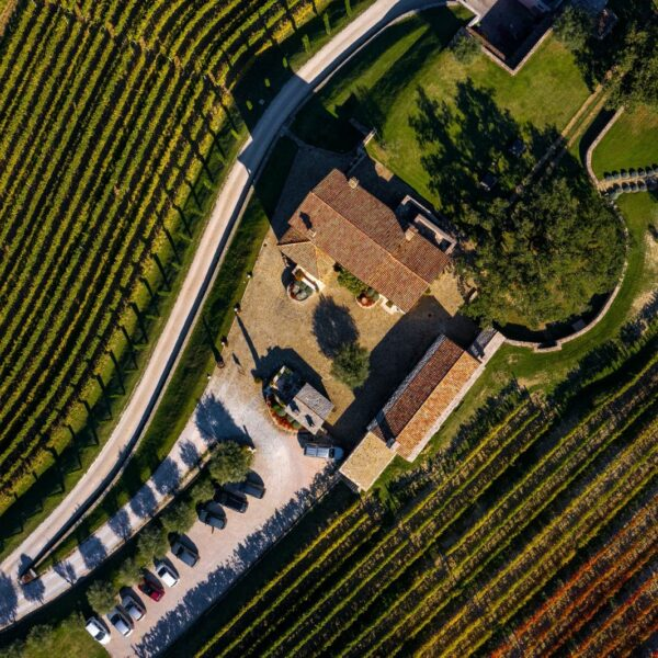 Kabola Winery, Istria, Croatia, photo credit by Kabola